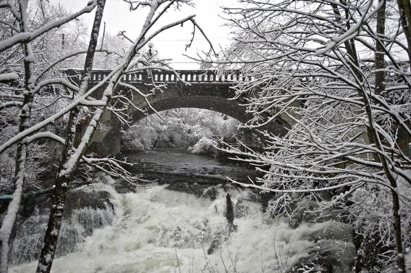 february-snow-53