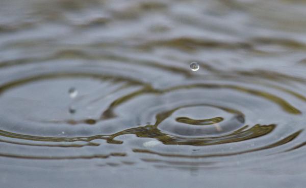 blog-macro-rain-02