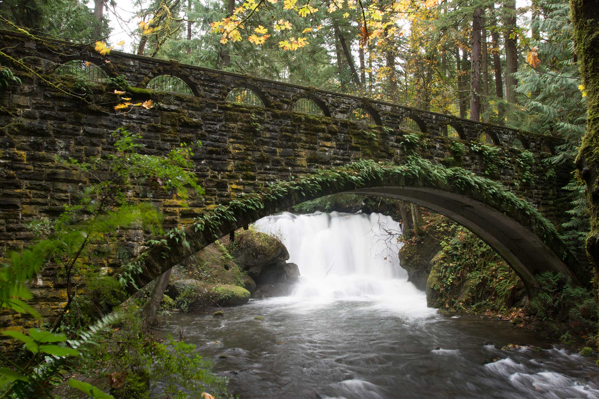 whatcom-falls-original