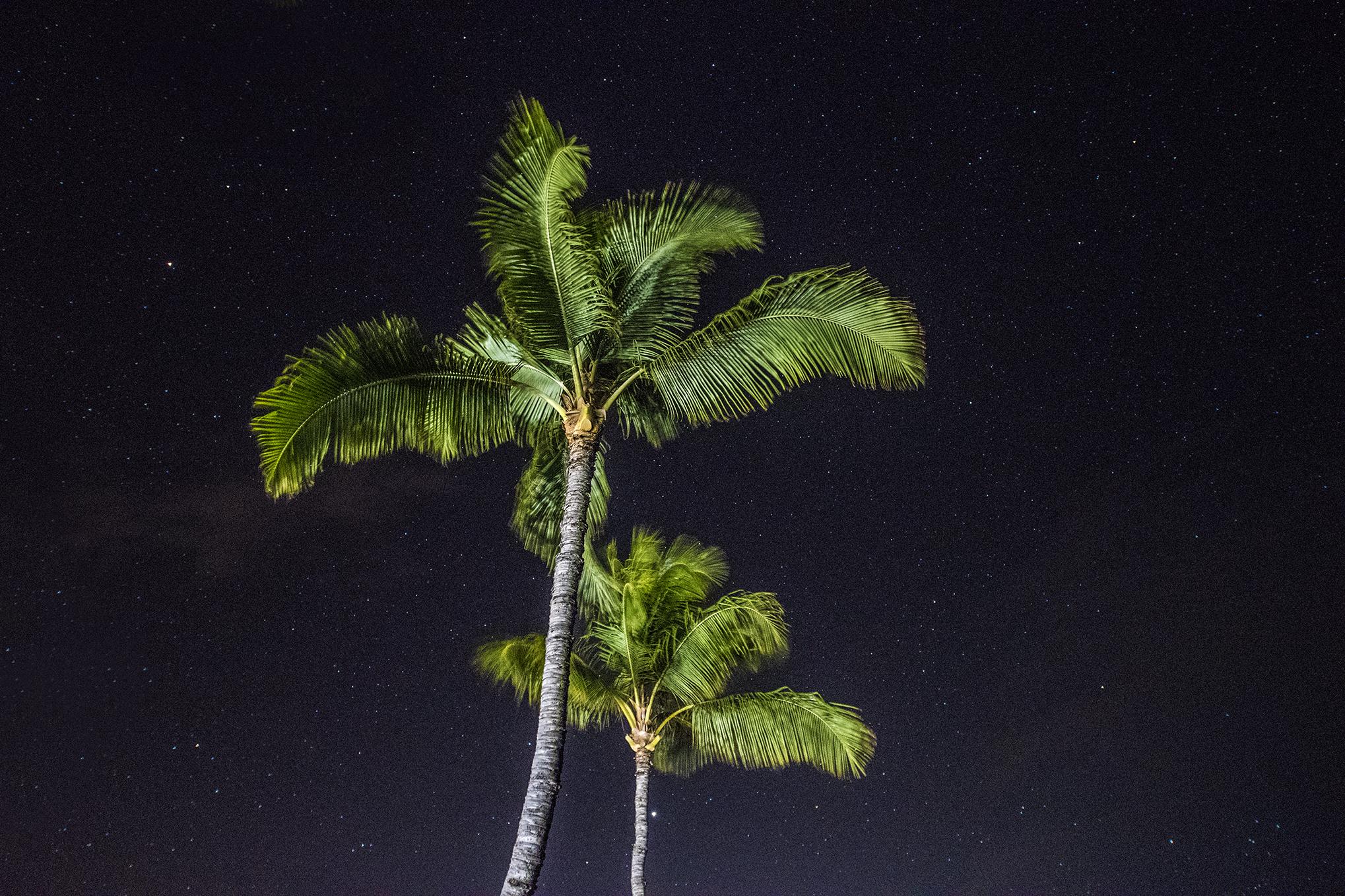 Honeymooning in Lahaina Maui - Equal Motion